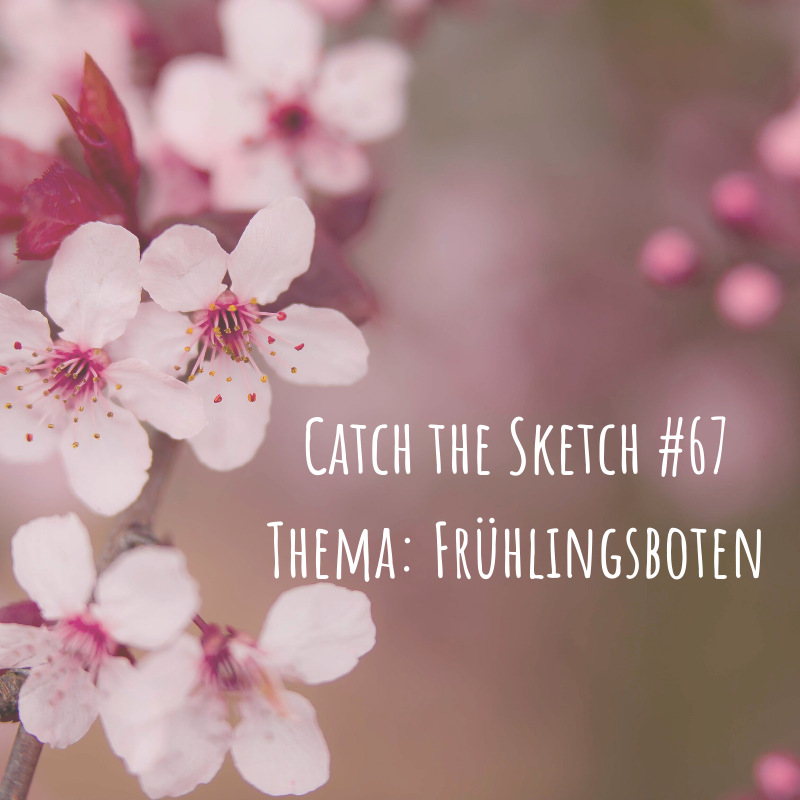 Catch the Sketch #67 Thema: Frühlingsboten